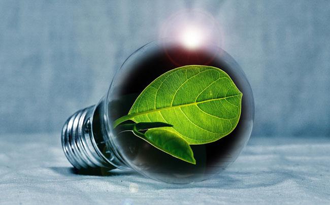La campaña de 2020: innovar para un mundo verde