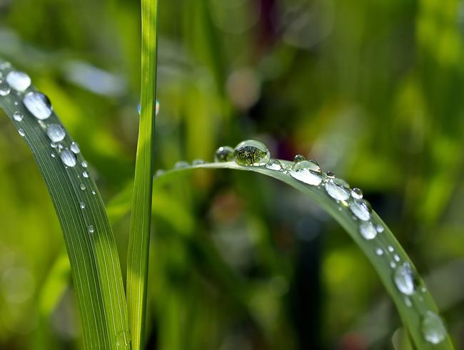 El ODS número 6 pretende garantizar agua dulce y saneamiento para todo el mundo